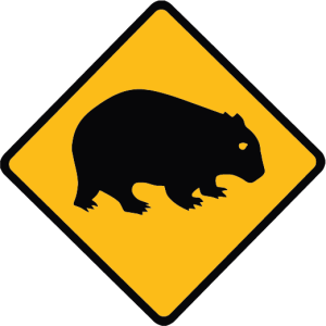 WombatsModels's Profile Picture