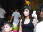 Parrots and tourists by A1Z2E3R