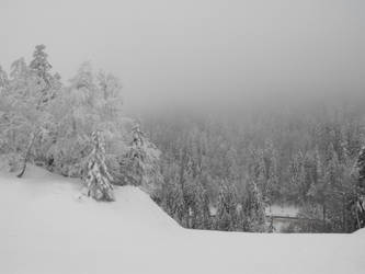 Frozen forest of Autrans 3 by A1Z2E3R