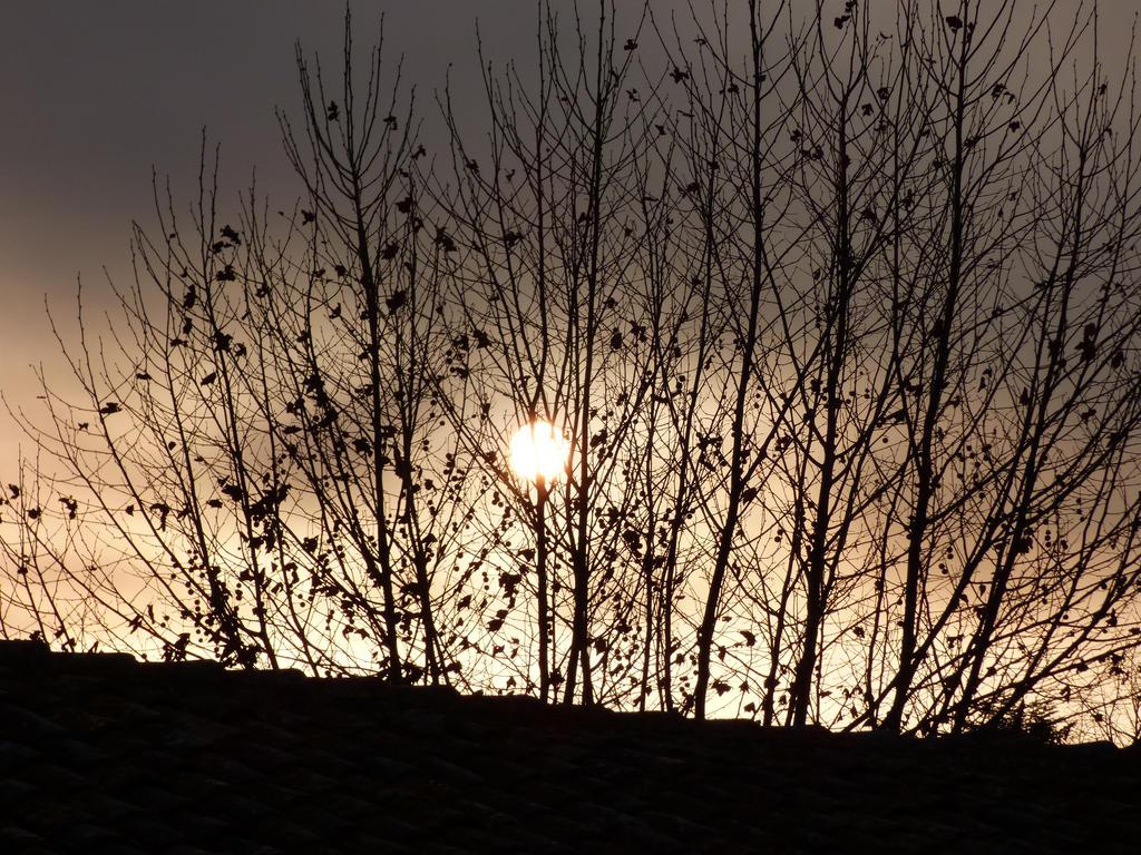 Peacefull Xmas sunrise 2015 by A1Z2E3R