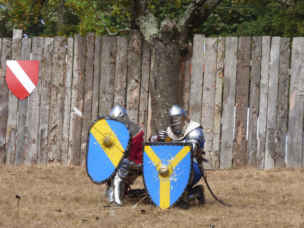 Two knights protecting themselves from arrows by A1Z2E3R