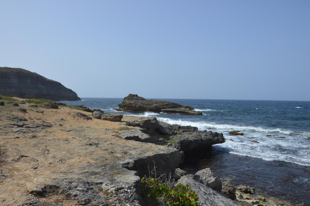 Rocks and Atlantic Ocean in Guadeloupe by A1Z2E3R