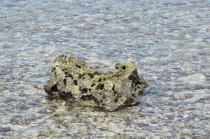 Rock with a lot of holes in the sea by A1Z2E3R