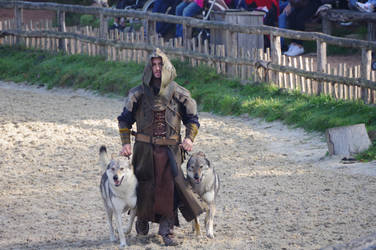 Medieval trainer cosplay and his wolfdogs