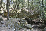 Rock fitted out in shelter in Cucuruzzu Forest 1 by A1Z2E3R