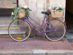 Flowery retro bicycle. by A1Z2E3R