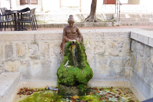 Mossy fountain with leaves on bassin