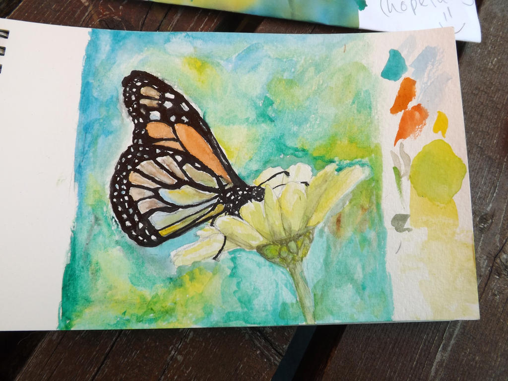 Butterfly Flower by Leafscatter