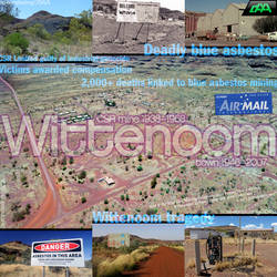 The Tragedy of Wittenoom by daanton