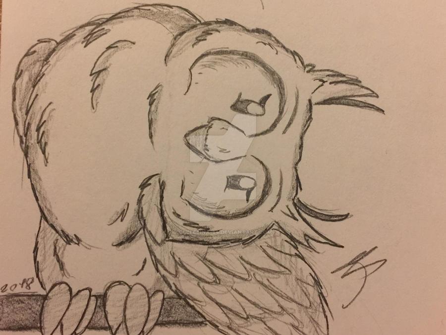 Owl. by Bellelina-64