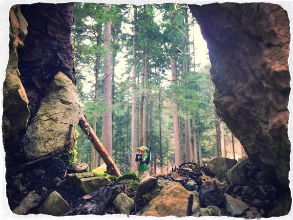 Lost Wood. by Bellelina-64