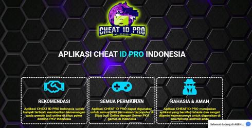 Cheat Idpro
