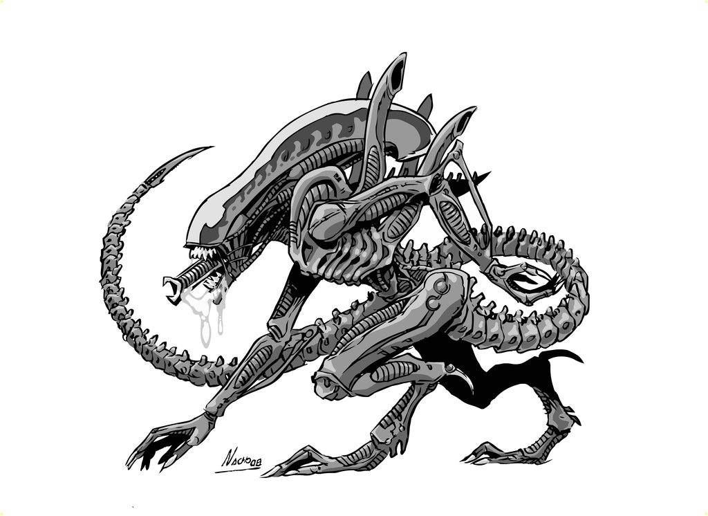Xenomorph Drawing By Nachomon