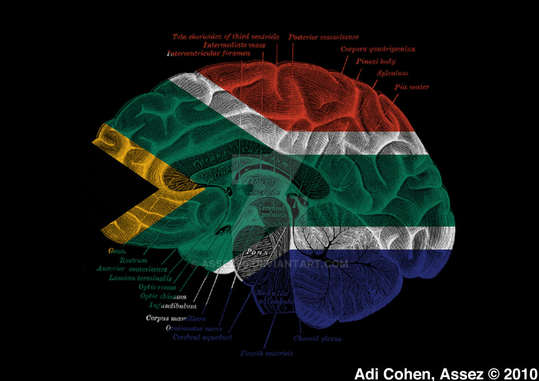 how to draw south africa flag