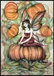 Pumpkin Faery