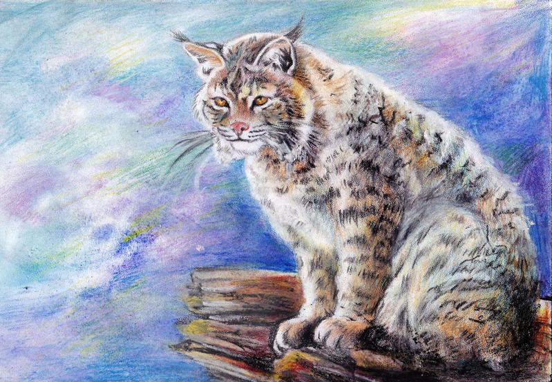 winter lynx by ledaryuga