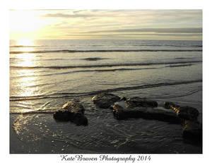 Seaborth12 01