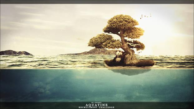 Emptiness | Aquatine Recruitment Challenge