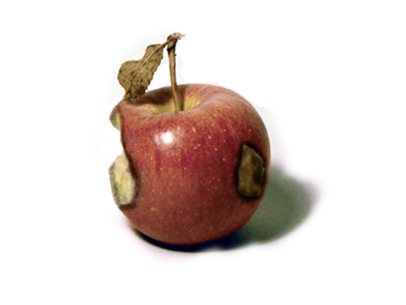 police deviance rotten apple or Chapter ten: police corruption lecture outline i introduction: police  a rotten  apples: few officers independently engaged in corrupt acts b rotten pockets:.