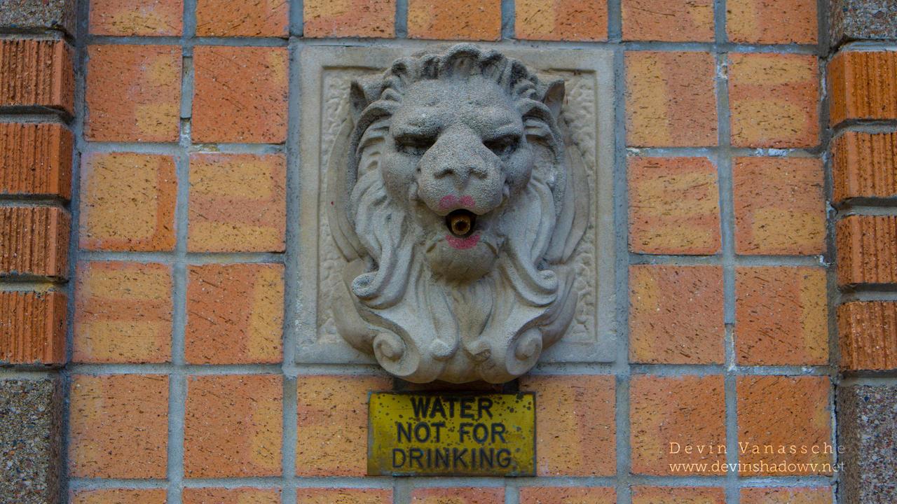 concrete lion lips by DevinShadowV