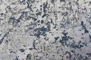 Cracked Plaster Texture