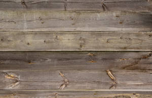 Old Wooden Planks Texture 06