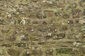 Dirty Brick Texture 04