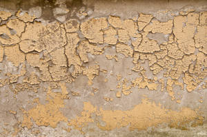 Cracked Plaster Texture 03 by SimoonMurray