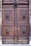 Ornate Medieval Door Texture