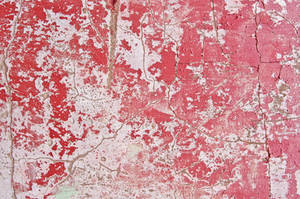 Cracked Plaster Texture 05 by SimoonMurray