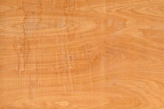 Plain Wood Texture
