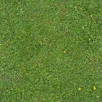 Seamless Green Grass Texture 01 by SimoonMurray