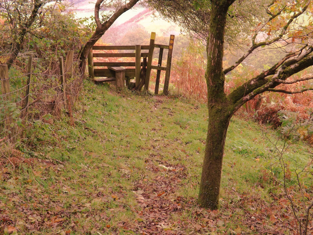 autumnal stile by nonyeB