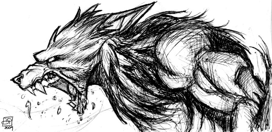 Werewolf Sketch By Kenpudiosaki On DeviantArt