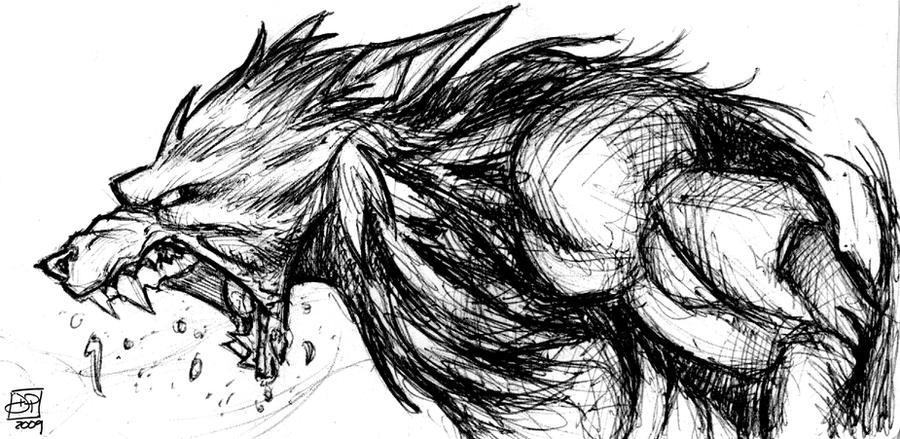 Werewolf Sketch by Kenpudiosaki