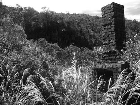 Coal Miners Remnants II