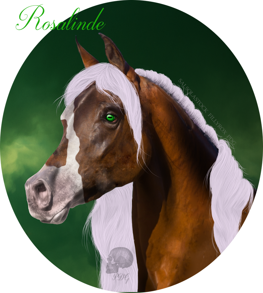 Rosalinde - Bust by play-dead-graphics