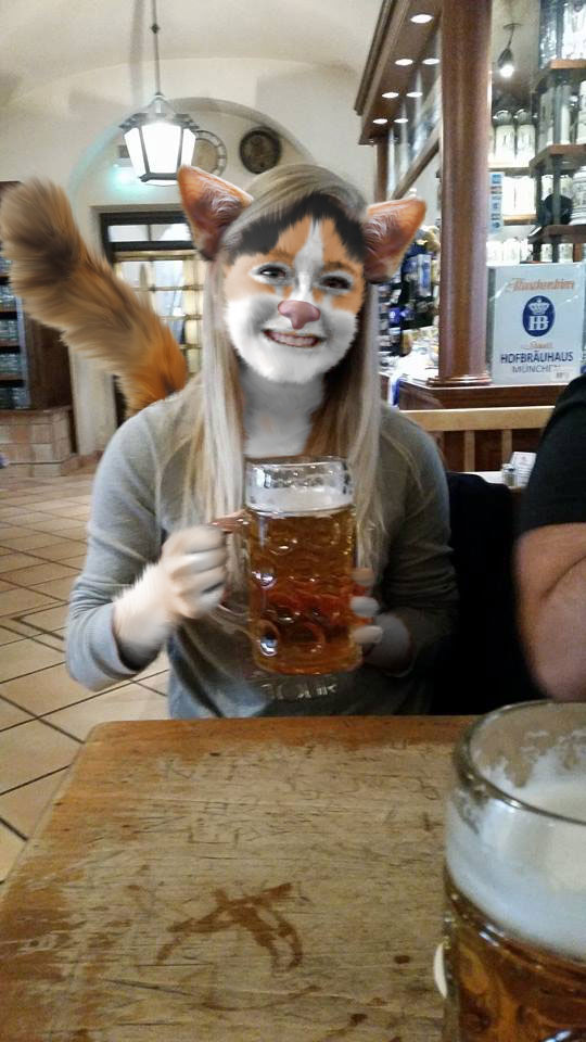 kitty cat beer