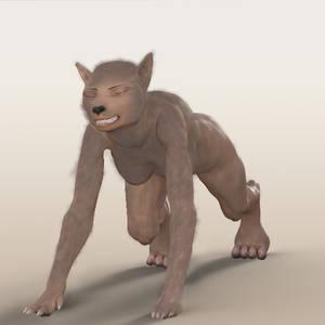 Test Wolf