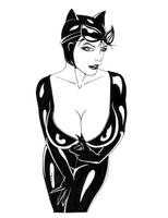 Catwoman Teasing by ESO2001