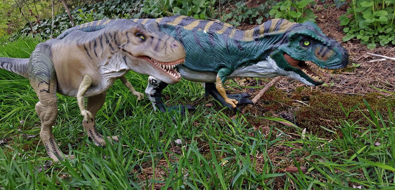 The Customs Thread Tyrannosaur_pair_by_abekowalski-da08tcm