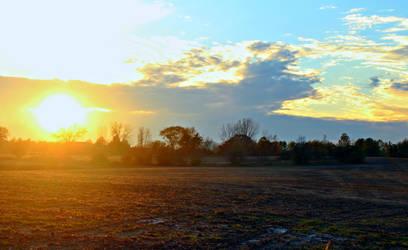 Cornfield Sunset by abekowalski