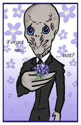 DW: Forget me not...?