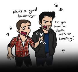 Teen Wolf: Stiles and Derek by blackbirdrose