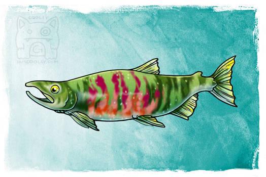 NPS Commission - Chum/Dog Salmon