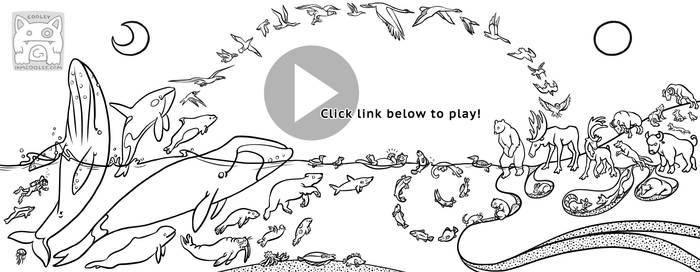 Whiteboard - AK Fibonacci Animals