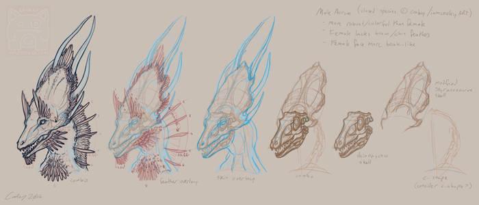 Headworld Speedpaint - Male Aurum Skull Study