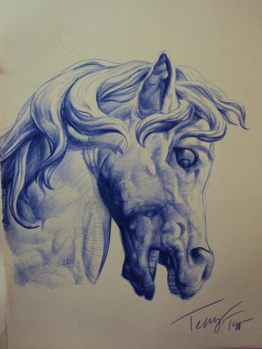 Horse sketch for tattoo by TerryTapp on DeviantArt