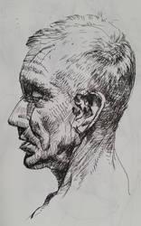 Portrait sketch 1