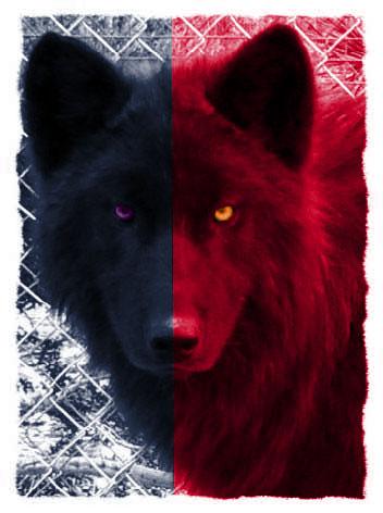 demon vs werewolf